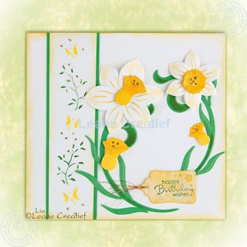 Picture of Daffodil