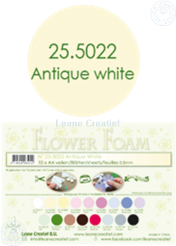 Bild von Flower foam A4 sheet antique white