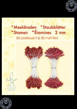 Image de Étamines ± 80 matt & 80 red