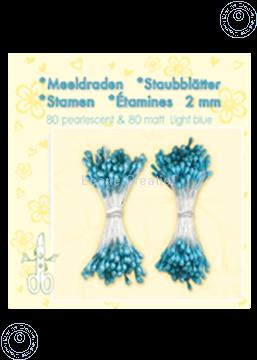 Image de Étamines ± 80 matt & 80 light blue