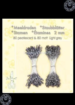 Image de Étamines ± 80 matt & 80 light grey