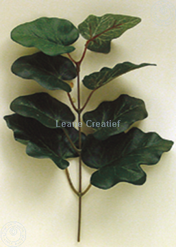 Bild von LeCreaDesign® Blattgrünpäckchen Efauzweig