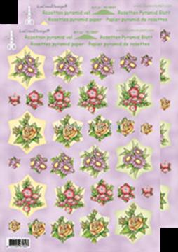 Bild von Rosetten Pyramidblätter Blumen rot/gelb