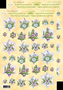 Bild von Rosetten Pyramidblätter Blumen roza/blau