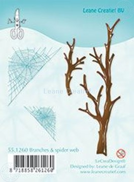 Image de Branches & spider web