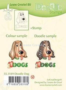 Image de Doodle Dog