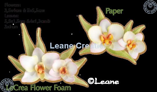 Afbeelding van Set Multi Die & Clearstamp Orchid