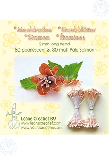 Afbeelding van Meeldraden 2mm,  80 matt & 80 pearl Pale salmon