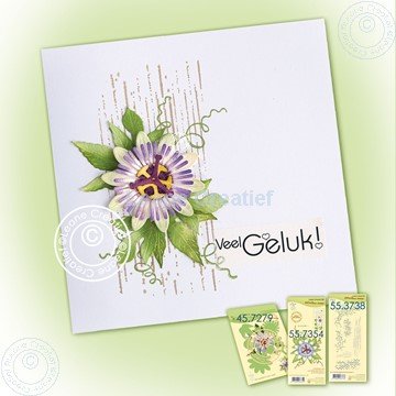 Image de Simple card with Passionflower