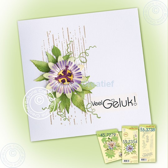 Image sur Simple card with Passionflower